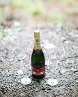 sandy-dwight-wedding-champagne-0514.jpg