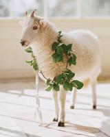 corbin-thatcher-lamb-1010-mwds109911.jpg