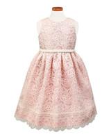 lace flower girl dresses sorbet