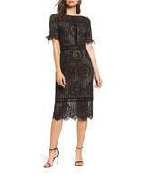 Tadashi Shoji Velvet Trim and Lace Dress