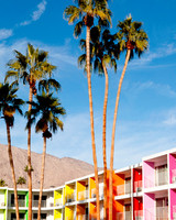 honeymoon-hotspots-palm-springs-1-0814.jpg