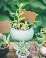 succulent Escort Card Favors