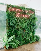 fern greenery backdrop