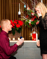 holiday-proposal-ornaments-ryan-kim-0115.jpg