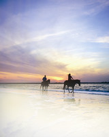 us-islands-amelia-horses-surf-beach-1115.jpg