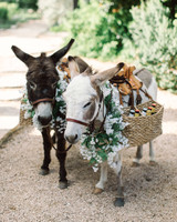 wedding donkeys drink basket flowers