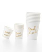bachelorette-party-cups-0009-d112027-0315.jpg