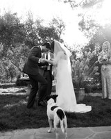 anika max wedding ceremony black and white dog breaking glass