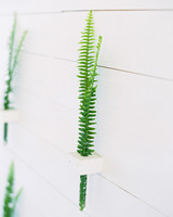 green sprigs in white wall holders