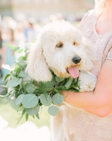 woman holding white dog wrapped in green vines