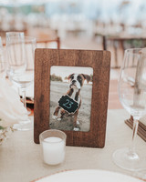 dog photo table number