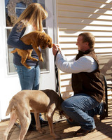 pet-proposal-angela-taylor-on-one-knee-0215.jpg