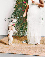 sara ryan wedding philadelphia dog