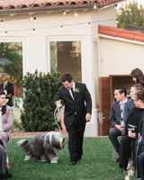 bride and groom wedding dog