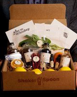 shaker and spoon cocktail kit
