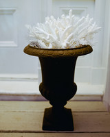 Coral-Filled Urns