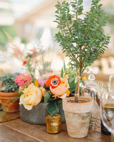 Potted Plant Wedding Centerpieces