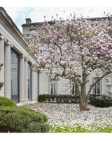 nyc-proposal-spots-frick-collection-gardens-0316.jpg