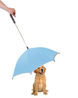 pet gift guide pour protection dog umbrella