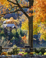 cedar lodge within fall foliage