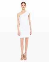 bridal-shower-dress-club-monaco-ruffle-dress-0416.jpg