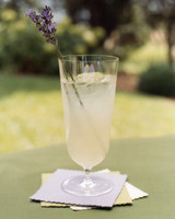 diy-sources-plastic-barware-wa101753lemonade-1014.jpg