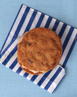 gillian-william-ice-cream-sandwiches-0043-wd109007.jpg
