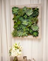 succulent wall decoration