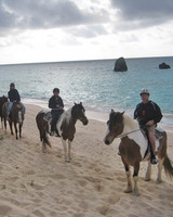 horseback riding in Bermuda