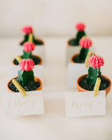 plant wedding favors mini cacti place cards