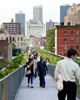 nyc-proposal-spot-the-high-line-wildflower-field-1114.jpg