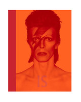 barnes and noble david bowie