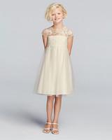 David's Bridal Mesh Dress