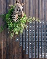 whitney zach wedding escort card wall taxidermy zebra