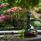 nyc-proposal-spot-central-park-conservatory-garden-1114.jpg