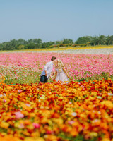 destination engagement couple kiss ranunculus flower field