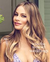 sofia-vergara-03-lavender-bridal-gown-043v2-d112252-beauty1-0815.jpg