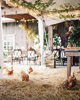 stephanie-mike-wedding-north-carolina-story-opener-reception-tent-farm-chickens-58-s112048.jpg