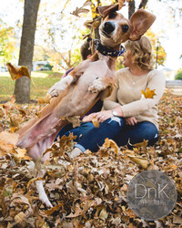 Cutest Photobomb Ever? A Dog Crashes His Owners' Engagement Pics!