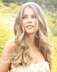 How to Get Sofia Vergara's Natural Wedding Makeup Look