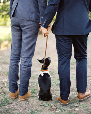 35 Ways to Ensure Your Dog Is the Guest of Honor at Your Wedding