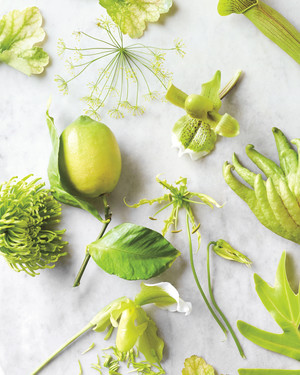 13 Chartreuse and Neutral Color Palette Ideas to Brighten Up Your Wedding Celebration