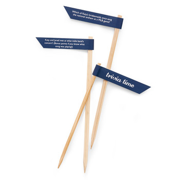 Trivia Drink Stirrers