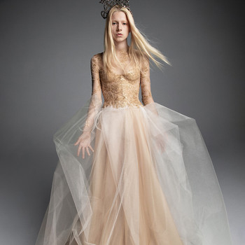 vera wang wedding dress champagne long-sleeved tulle skirt