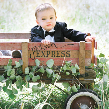 My Ring Bearer Is Too Young to Walk Down the Aisle Himself—What Are Our Options?