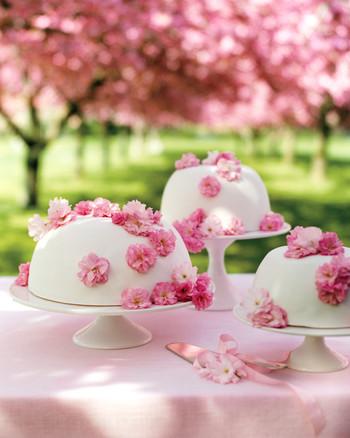 bridal-shower-cakes-cherry-blossom-0814.jpg