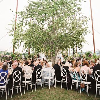 julia mitchell wedding reception