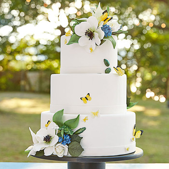 katie samuel wedding cake