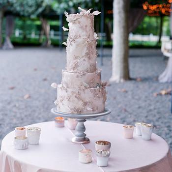 gillian tyler wedding butterfly cake