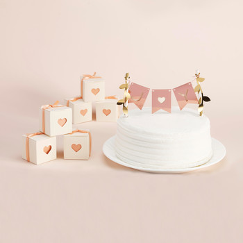 Design Space Banner Cake Topper and Favor Box
